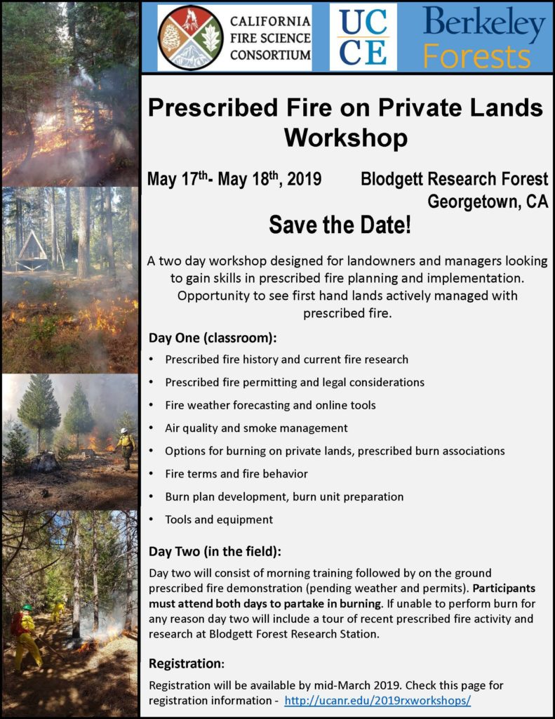 Blodett Fire_2019_Rx_workshop 5-17_18_2019